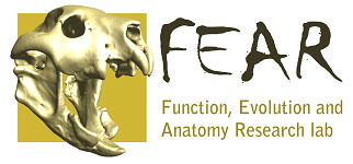 This image has an empty alt attribute; its file name is FEARlab-7.jpg